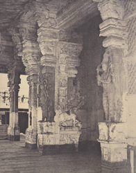 Entrance to the nave from the western portico. [Pudu Mandapa, Minakshi Sundareshvara Temple, Madurai]